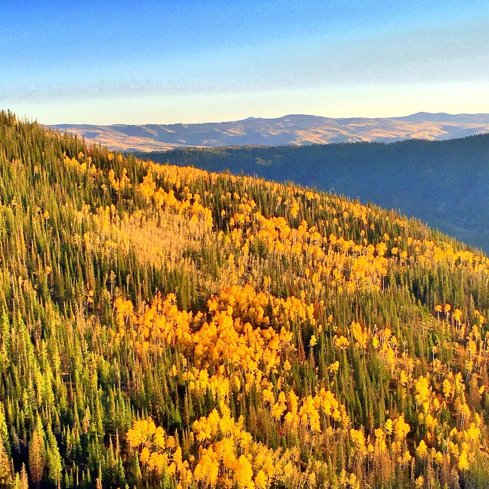 Amazing Fall Colors in Park City