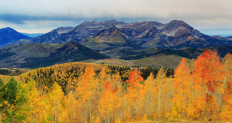 Amazing Fall Colors in Park City 3