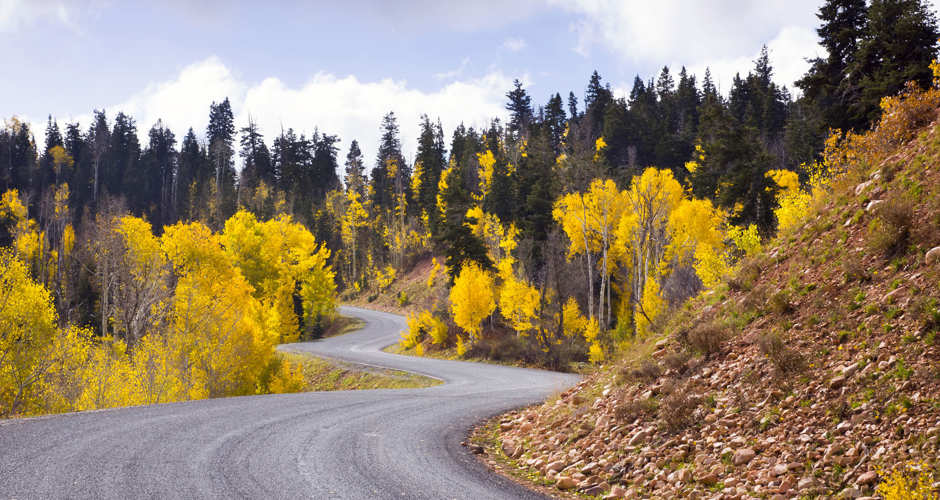 Amazing Fall Colors in Park City 4