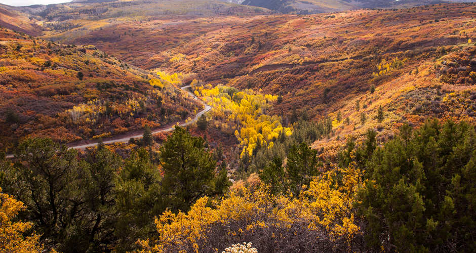 Amazing Fall Colors in Park City 5