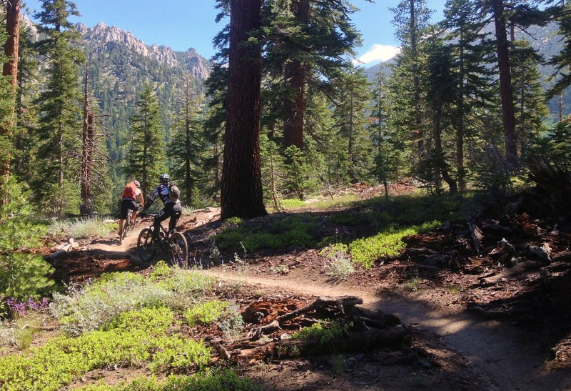 Awesome Mountain Bike Trails Near Placerville 1