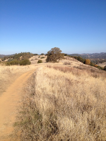 Awesome Mountain Bike Trails Near Placerville 5