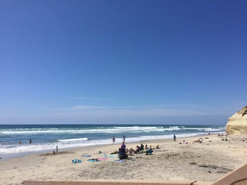 Best Beaches in North County San Diego 4