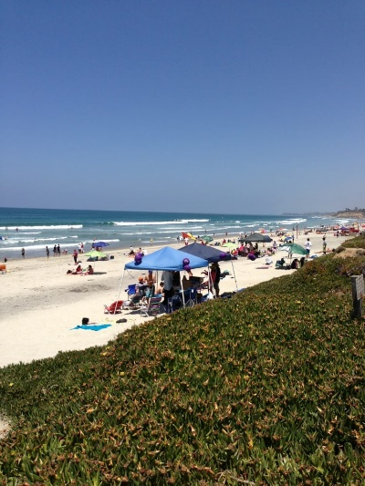 Best Beaches in North County San Diego 5