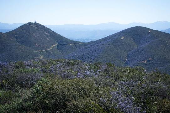Double Peaks in San Marcos