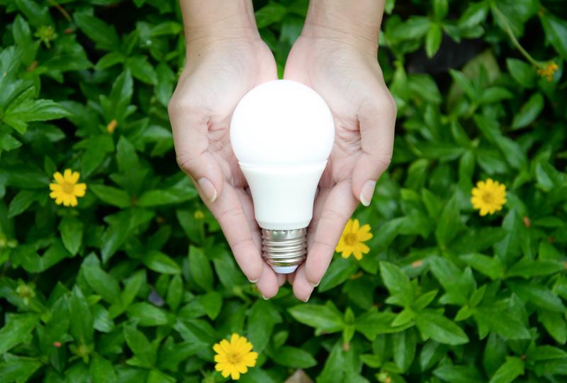 Hands Holding Eco Friendly LED Lightbulb