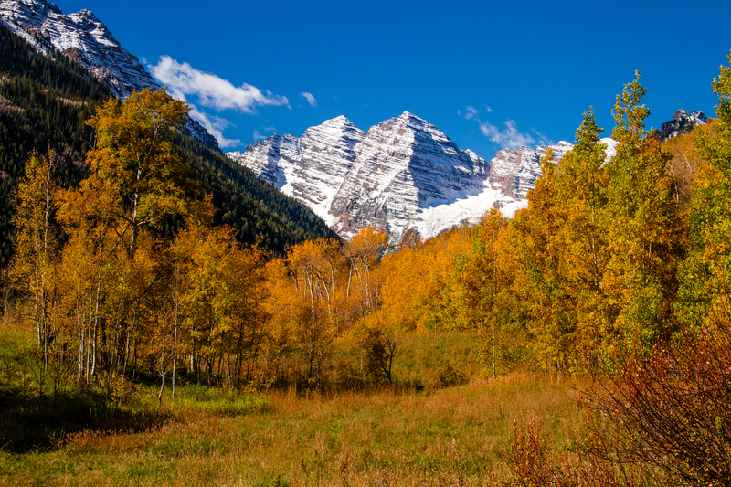 Mountains & Trees Fall Landscape in Aspen Colorado