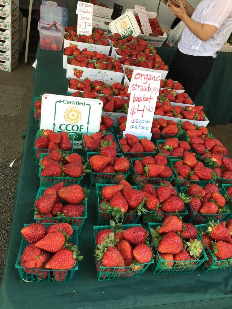 Farmer's Markets in East Bay 5