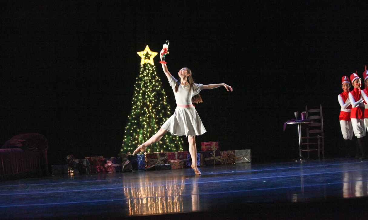 Festive Holiday Activities in Bay Area 4