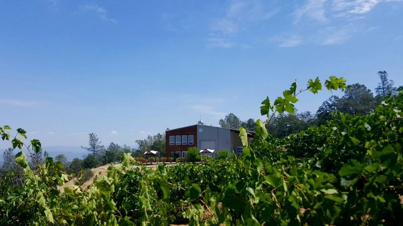Mount Aukum Winery in Somerset, CA