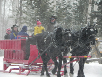 Sleigh Ride & Carriage in Park City, UT