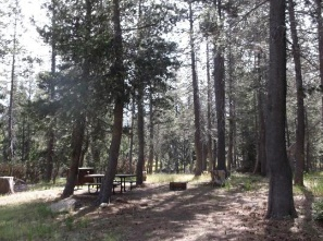 Wrights Lake Campground